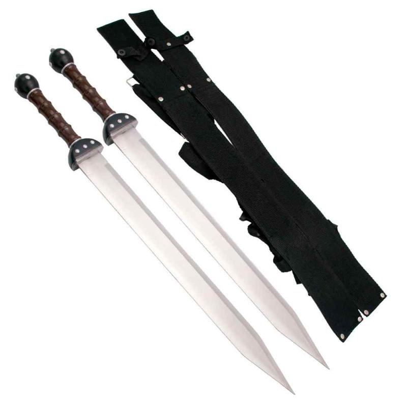 2 Gladius Swords - 3