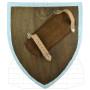 Templar functional shield - 1